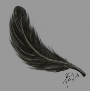 feather_092508
