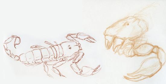 scorpion_072911_01