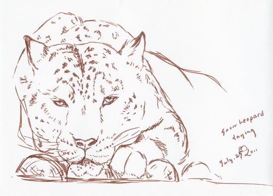 snowleopard_072711
