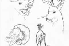 2014_animalsketches_001